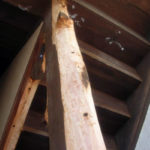 escalier-mairie-conquereuil-apres-intervention-entreprise-levasseur-traitement-des-bois